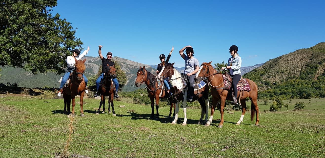 верховая езда лошади албания
