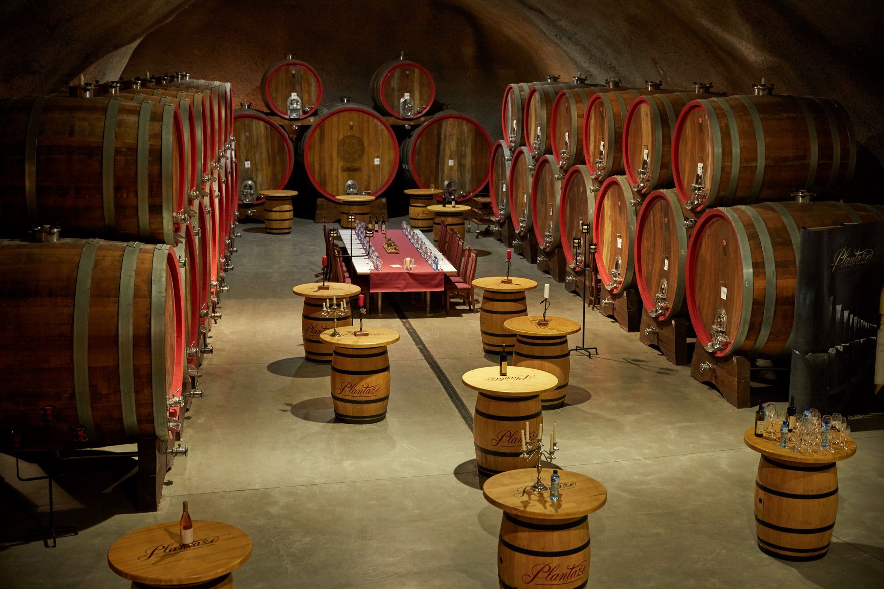 винодельня Черногории