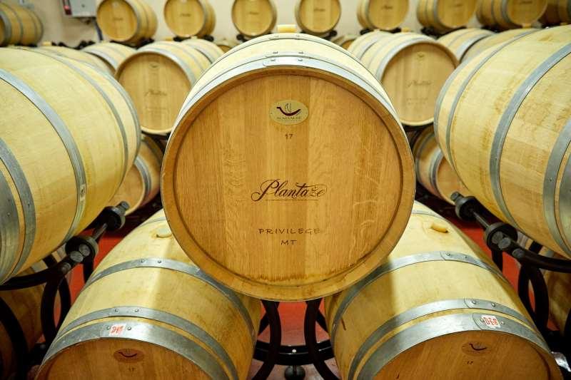 Плантаже винодельня