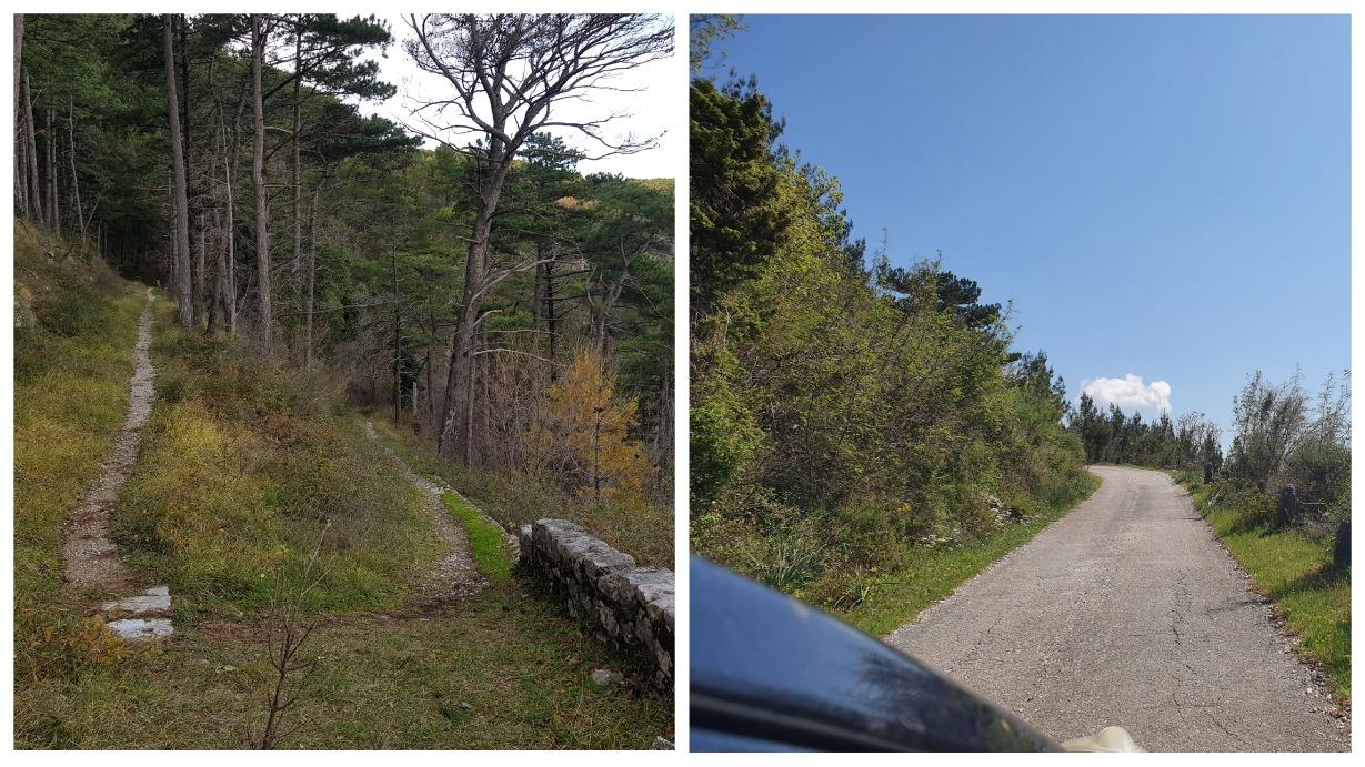 дорога к крепости Врмац