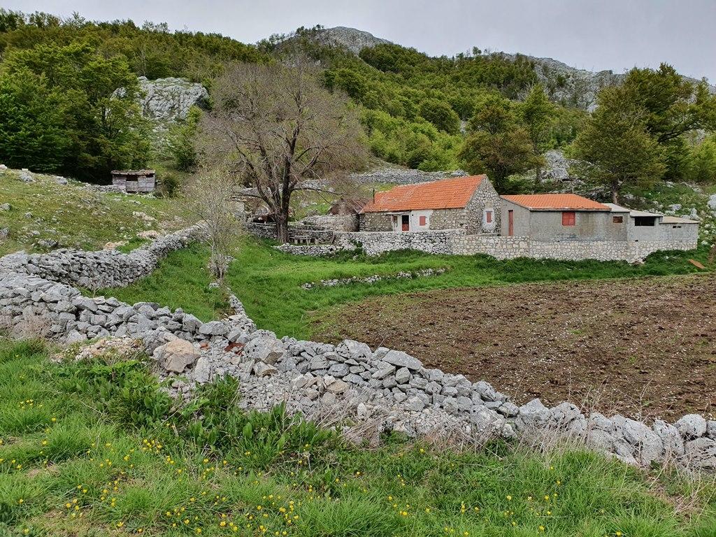 треккинг в Черногории