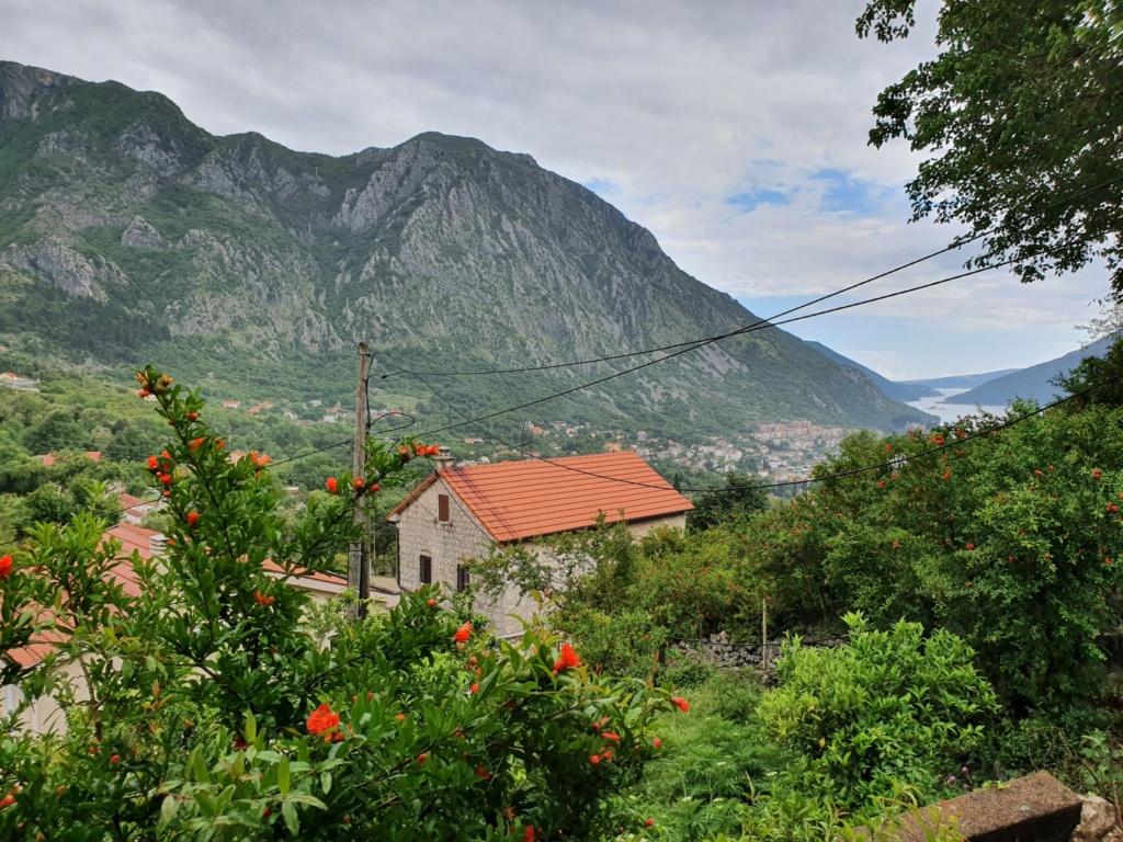 Рисан Черногория