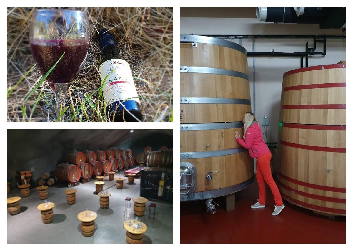 винодельня Плантаже экскурсия