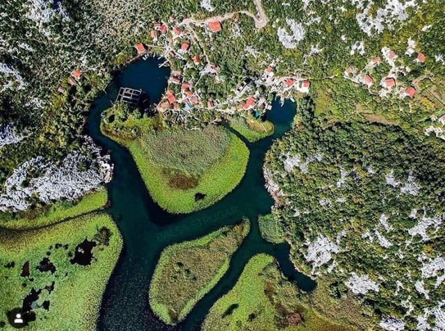 Скадарское черногория фото