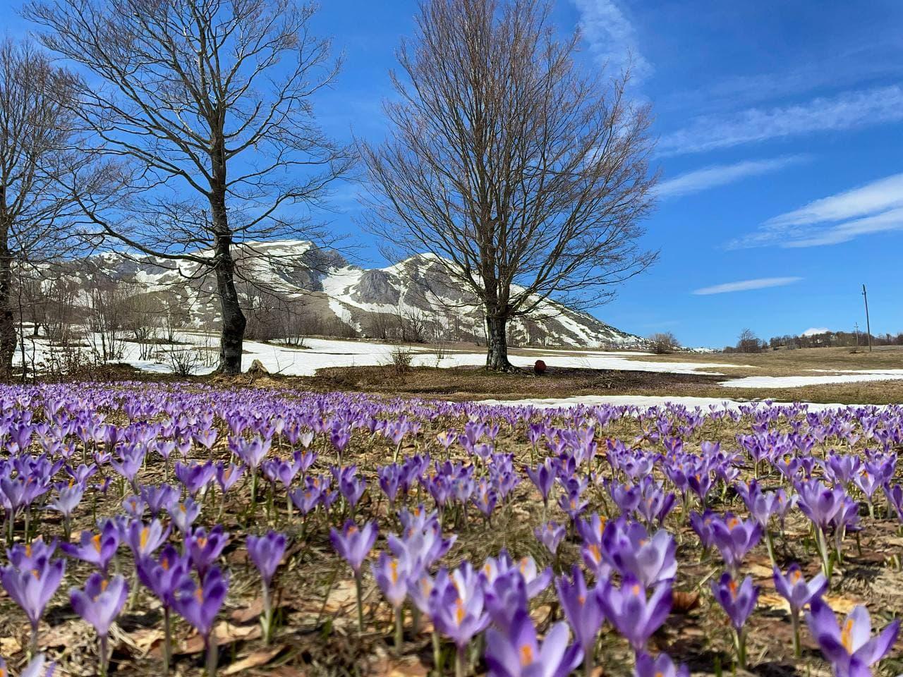 национальный парк Дурмитор фото