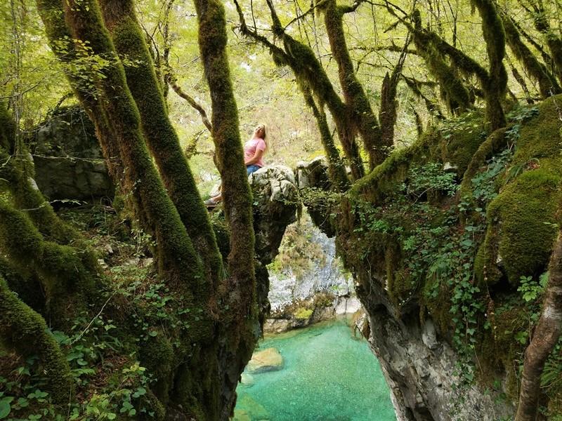 экскурсия каньоны черногория