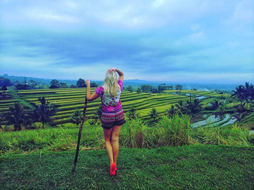 самые большие рисовые террасы на бали