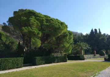Святой Стефан и парк Милочер