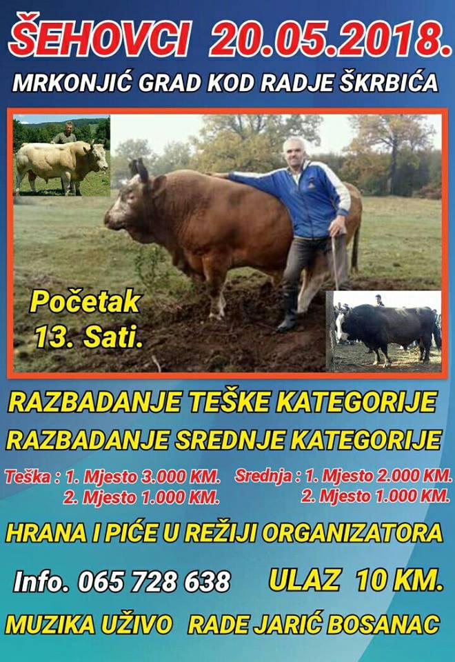 Бой быков в Боснии и Герцеговине
