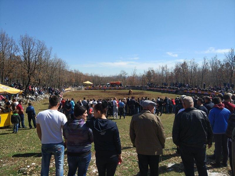 Босния и Герцеговина, бой быков