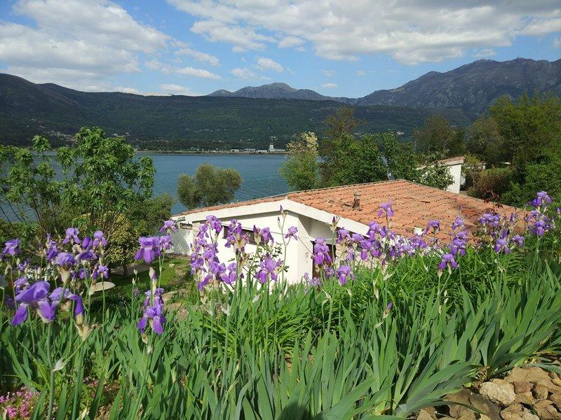 остров Цветов, Черногория