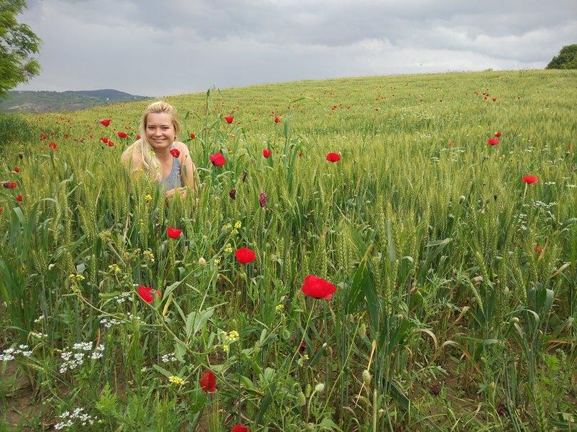 в Албанию из Черногории