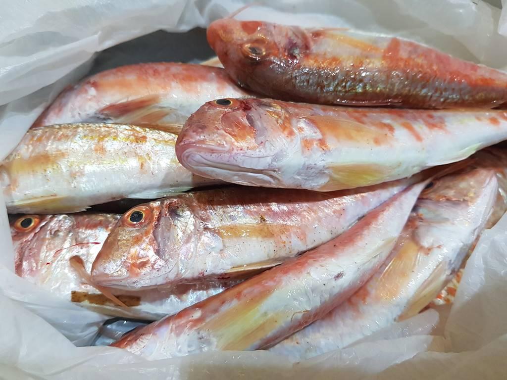 Черногория рыба