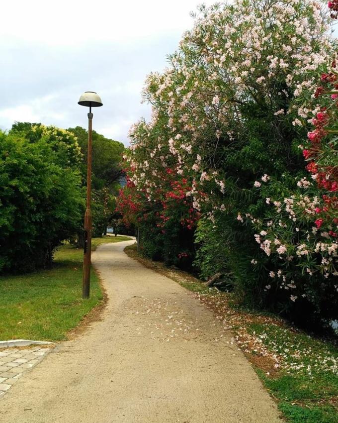 Остров Цветов Черногория