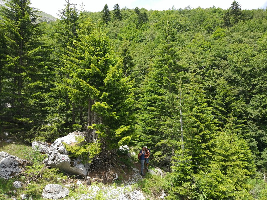 интересные факты +о черногории для туристов