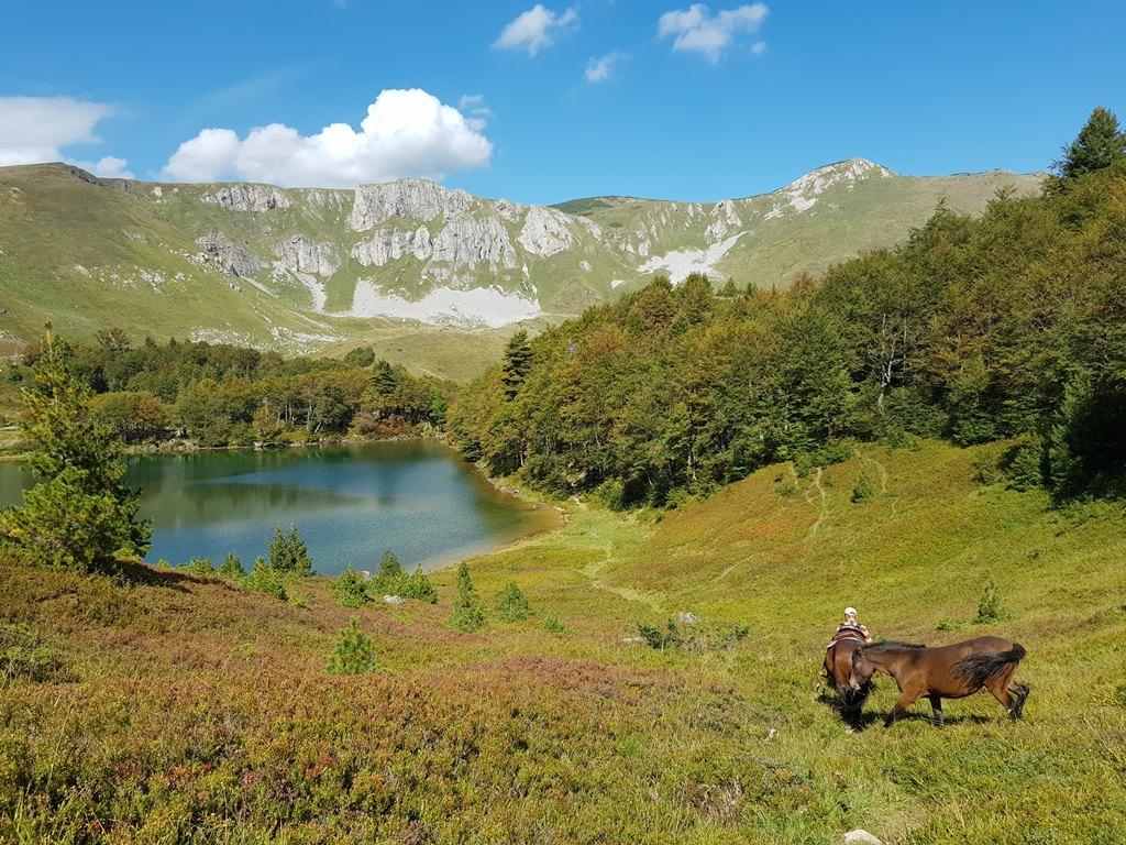 Пешича озеро, Беласица