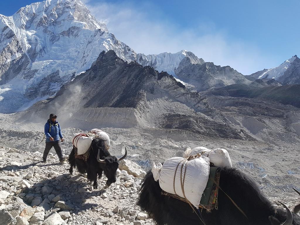 треккинг в Непале к Эвересту