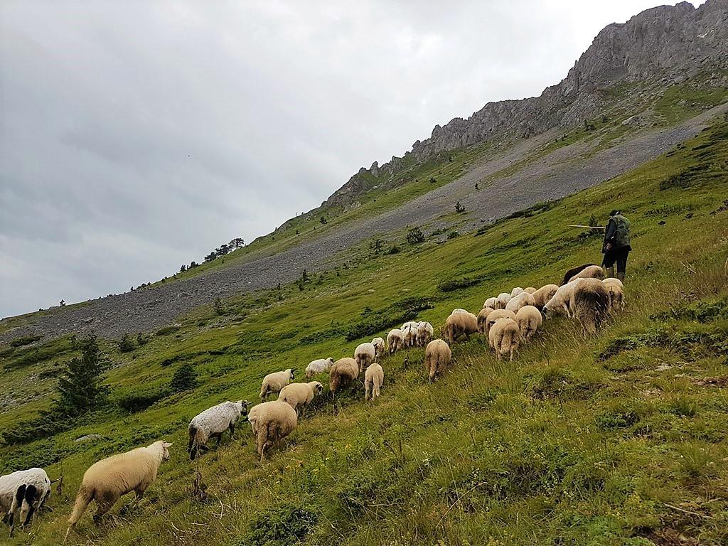 горы Комови Черногория