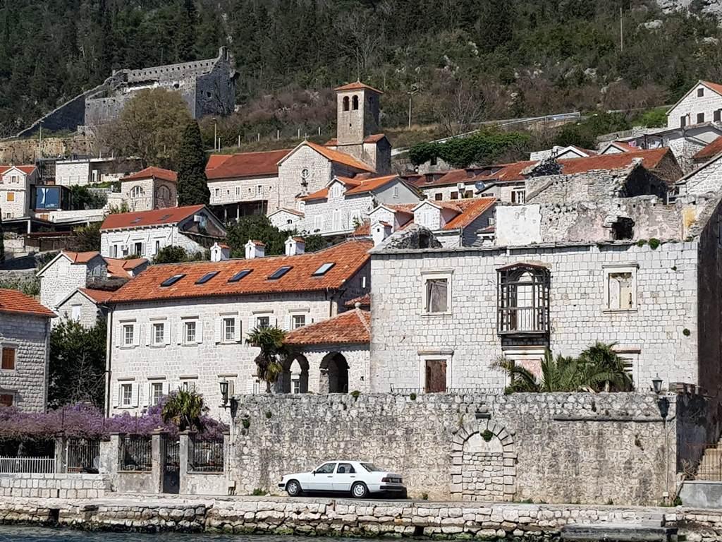 глициния в Черногории