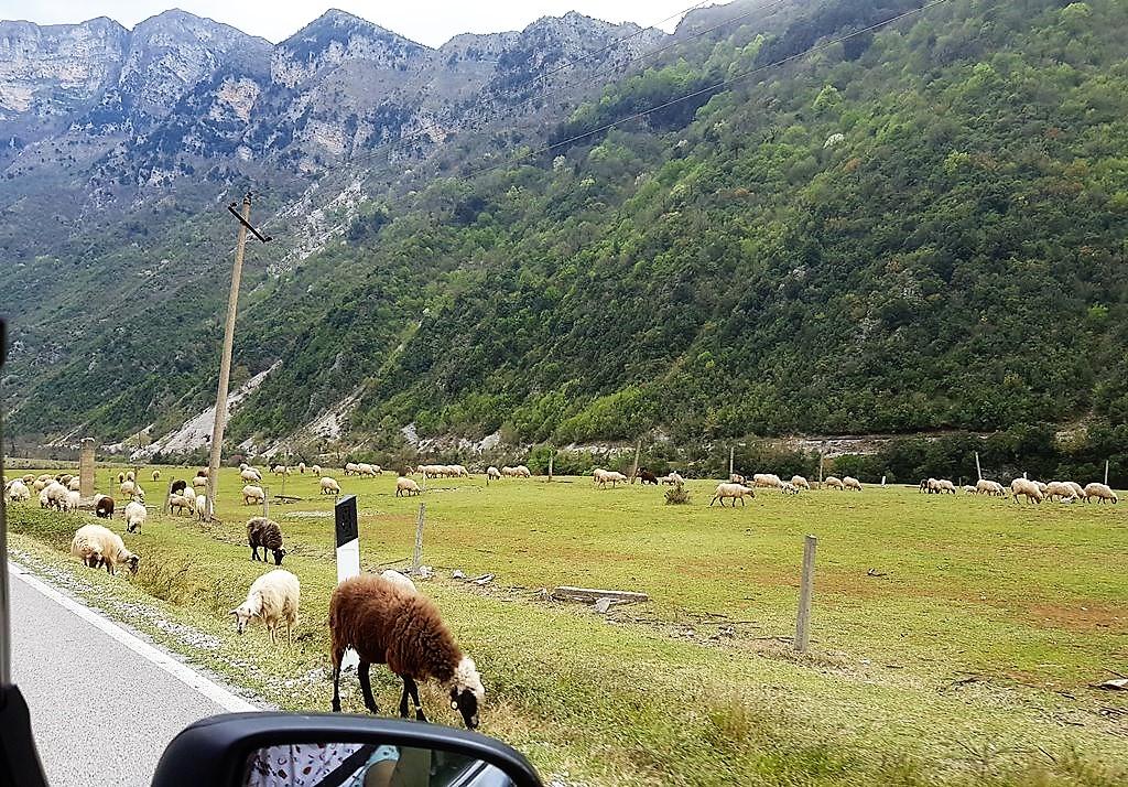 на авто по Албании