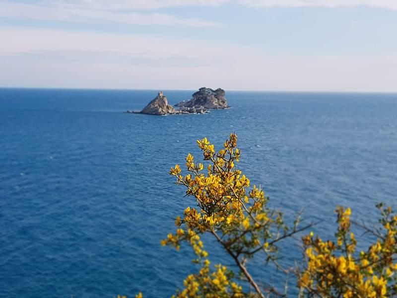 Петровац острова