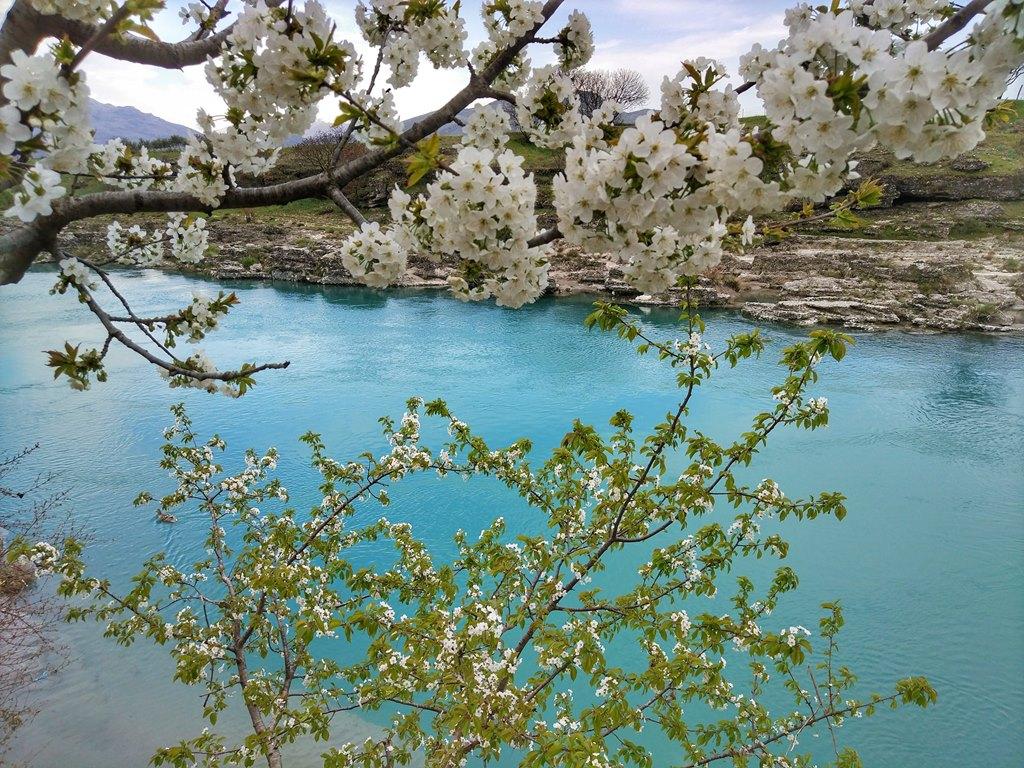 река Циевна